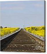 Along The Tracks Canvas Print