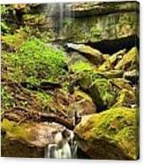 Alpha Falls Cascades Canvas Print