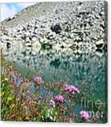 Alpine Lake And Flora Canvas Print