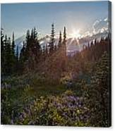 Alpine Meadow Sunrays Canvas Print