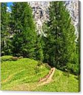 alpine path in Contrin Valley Canvas Print