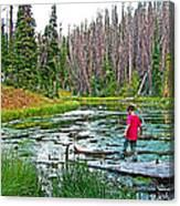 Alpine Pond On Alpine Pond Trail In Cedar Breaks National Monument-utah Canvas Print