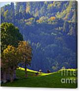 Alpine Summer Scene In Switzerland Canvas Print