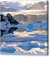 Alsek Glacier In St. Elias Mountains Canvas Print