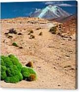 Altiplano Landscape Canvas Print