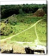Altun Ha - Wide View Canvas Print