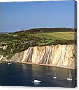 Alum Bay And The Coloured Sand Cliffs Canvas Print