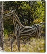 Alys Beach Driftwood Horse Canvas Print