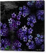 Alyssum Canvas Print