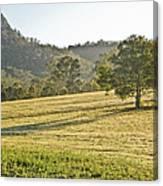 Amaroo Landscape - Paisaje De Amaroo Canvas Print