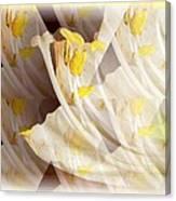 Amaryllis-6 Canvas Print
