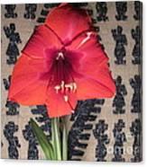 Amaryllis Flower With Guatemalan Mountain Blanket Canvas Print