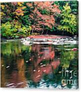 Amazing Fall Foliage Along A River In New England Canvas Print