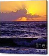 Amazing - Florida - Sunrise Canvas Print