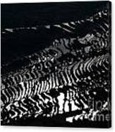 Amazing Rice Terrace In Black And White Canvas Print