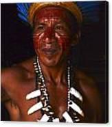 Amazon South America 3 Canvas Print