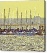 Amber At White Rock Canvas Print