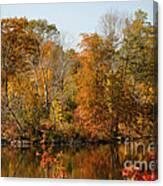 Amber Days Canvas Print