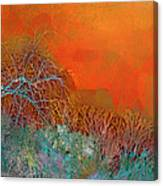 Amber Winter Canvas Print
