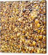 Amber World Canvas Print