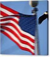 America Soaring Canvas Print
