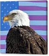 American Bald Eagle 2 Canvas Print