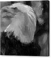 American Bald Eagle V4 Canvas Print