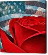 American Beauty Canvas Print