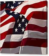 American Flags   #5147 Canvas Print