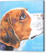 American Foxhound Canvas Print