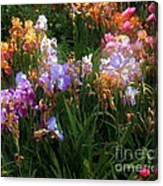 American Giverny Canvas Print