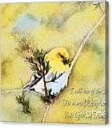 American Goldfinch On A Cedar Twig With Digital Paint And Verse Canvas Print