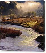 American River Confluence Canvas Print
