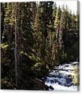 American River Canvas Print