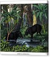 American Tapir Canvas Print