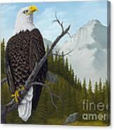 America's Pride Canvas Print