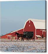 Amish Buggy And Red Barn Canvas Print