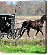 Amish Buggy Canvas Print
