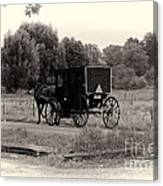 Amish Buggy Sept 2013 Canvas Print
