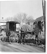 Amish Carriage, 1942 Canvas Print