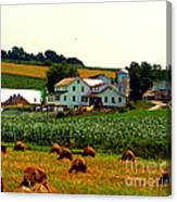 Amish Farm On Laundry Day Canvas Print