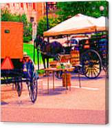Amish Market. Canvas Print