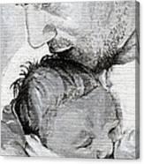 Amit And Mika Canvas Print