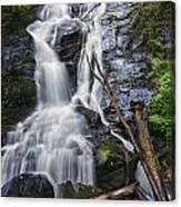 Ammons Falls Canvas Print
