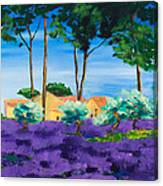 Among The Lavender Canvas Print