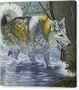 Amoni Rose Canvas Print