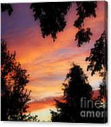 Ams 186a Canvas Print
