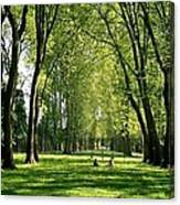 An Afternoon At Versailles  Canvas Print