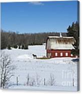 an American Frozen Pasture Canvas Print