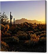 An Arizona Morning  Canvas Print